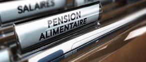 La pension alimentaire répond à l'obligation légale de contribuer à l'entretien et à l'éducation de ses enfants. Elle intervient le plus souvent en cas de divorce ou de séparation.